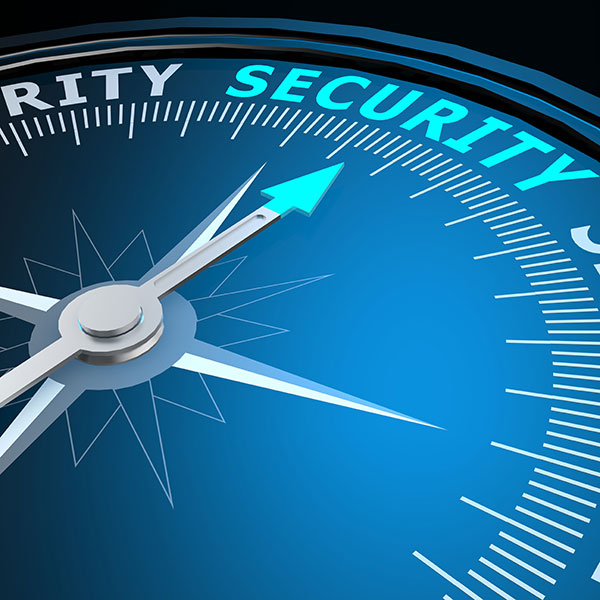 Security Consulting & Risk Assessment